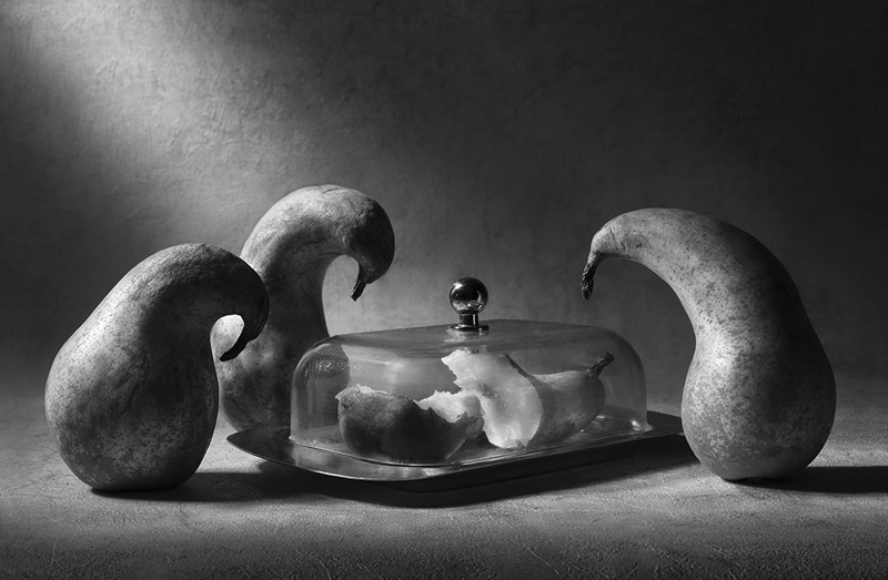 груши-похороны-виктория-иванова-фотограф